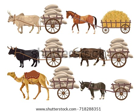 Set of animal-powered transport. Vector illustration