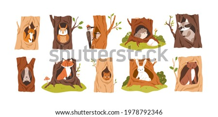 Set of animals and birds inside hollows. Squirrel, owl, woodpecker, hedgehog, raccoon, bat, fox, beaver, hare, and weasel in tree hole houses. Flat vector illustration isolated on white background