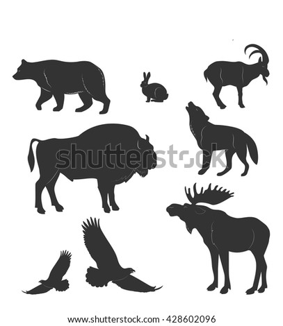 set of animals wild beasts