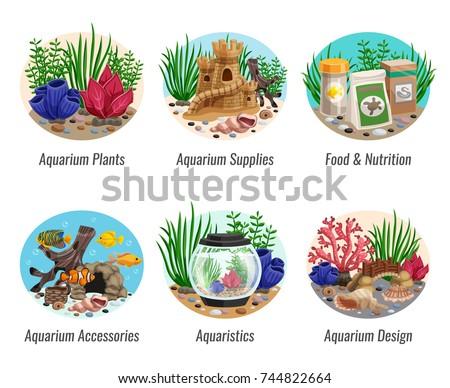 set of aquarium compositions