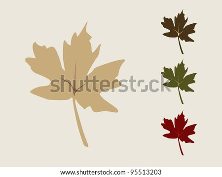 Set of Autumn Maple Leafs.