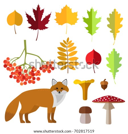 Set of autumn symbols. Autumn icon and objects set. A fox, mushrooms and leafs.