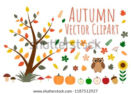 Set of autumn vector clipart. Tree with colorful leaves, flowers, apples, berries, pumpkins, mushrooms, acorn, owl,  sunflower in flat style. Fall theme element of design for your artworks.