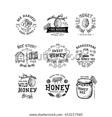 Set of badge Honey. Hand drawn bee, flower, hive, glass jar. Label logo template. Design fashion apparel print. Graphic vintage illustration.