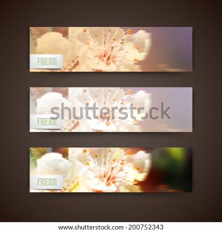 Set of banners with blurred background of blossom cherry flowers, vector design