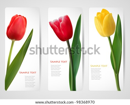set of banners with colorful