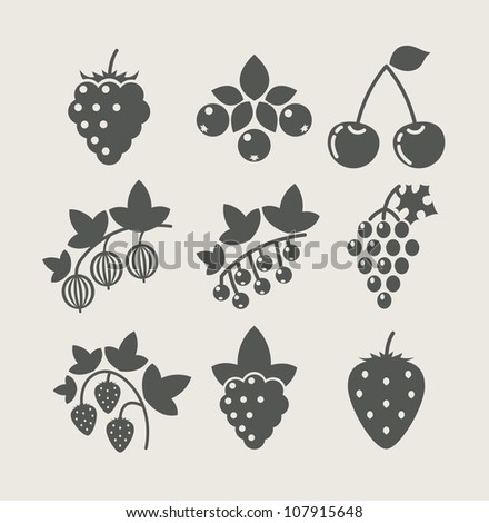 set of berry food icon vector illustration