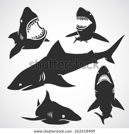 set of big sharks black