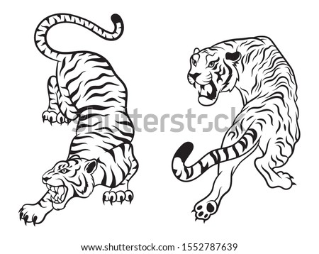 Set of big tigers. Collection of portraits of predatory wild cats. Set of wildlife and fauna dwellers. Vector illustration on a white background. Tattoo Foto stock ©
