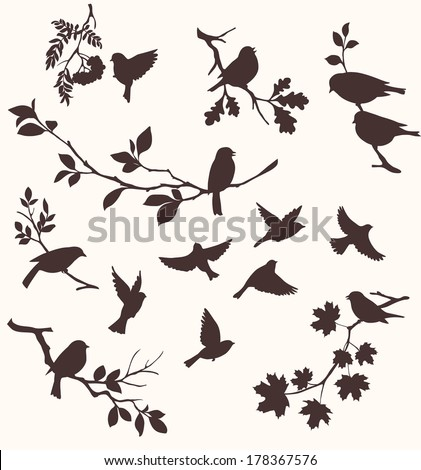 set of birds and twigs
