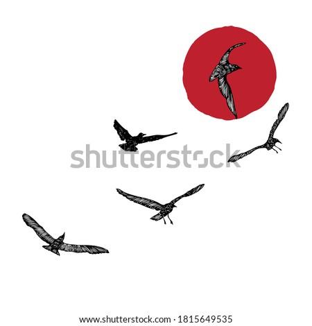 set of birds flock  flying