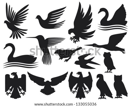 set of birds silhouettes hummingbird dove sparrow owl swan stork eagle falcon stock. Black Bedroom Furniture Sets. Home Design Ideas