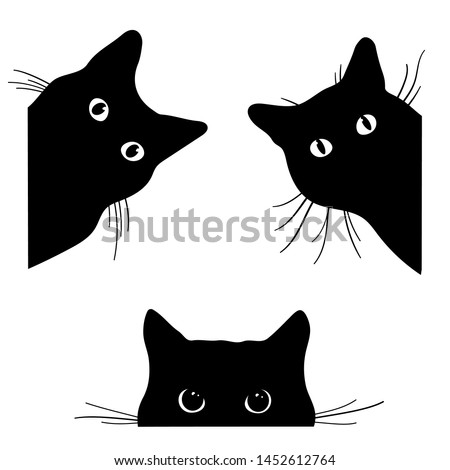 set of black cats looking out