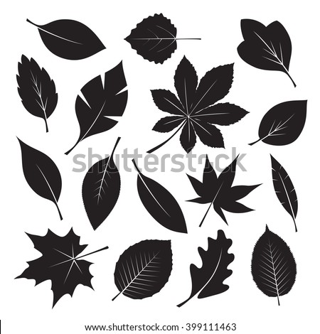 set of black different tree