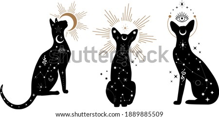 Set of black magical cats, Mystic Sphynx cat with crescent moon esoteric symbol, constellation, stars  magical elements. Magical cat,witchy black cat