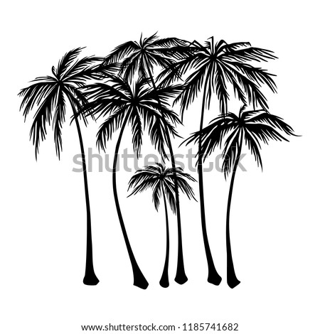 set of black Palm trees silhouette on a white background. Vector illustration, design element for congratulation cards, print, banners and others