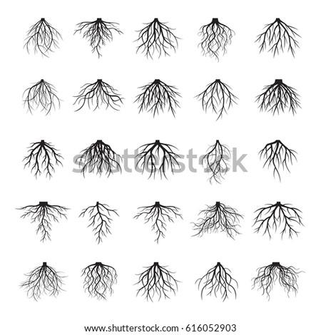 set of black roots vector