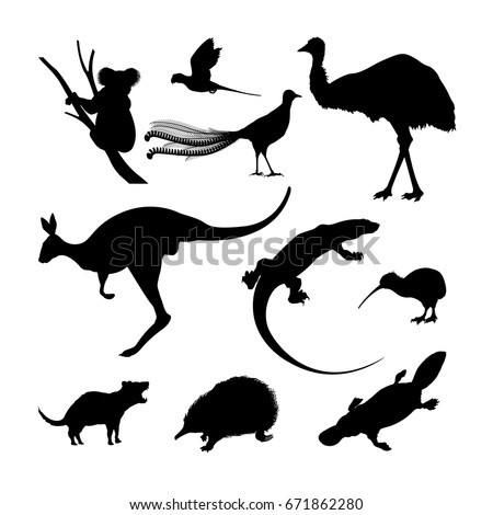 Set of black silhouettes of Australian animals. Kangaroo, koala and emu on a white background. Vector illustration