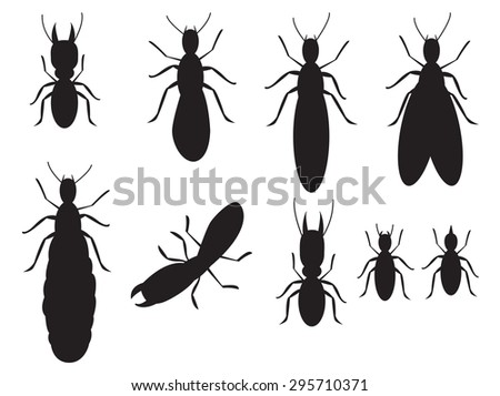 Set of Black silhouettes termites on a white background, vector. top view.