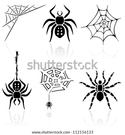 Set of black spider icons on white background, illustration
