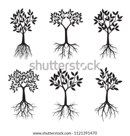 Set of black Trees. Vector Illustration. Plants and garden.