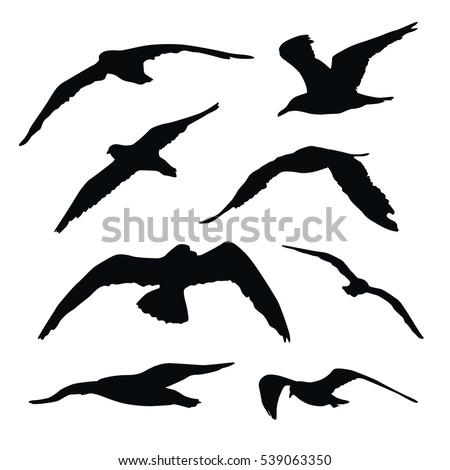 set of black vector flying