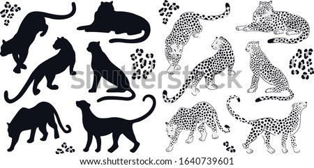 Farm Animals Animal Free Black White Images Chicken Clip Art Image Provided  - EpiCentro Festival