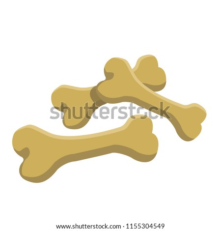 Set of bones. Bones are edible for dogs. Pet toys. Dog toy Rubber bone. Modern vector flat design image isolated on the white background.
