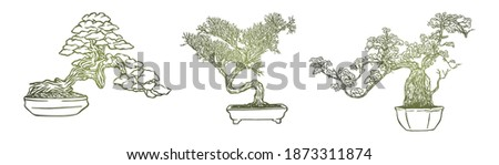 Set of bonsai Japanese trees grown in containers - Hand drawn - Out line Сток-фото ©