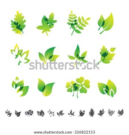 set of 12 botanical icons