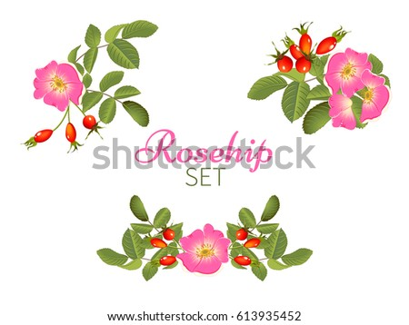 set of bouquet of flowering