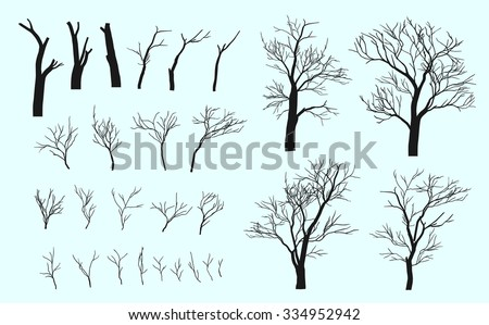set of branches trees are