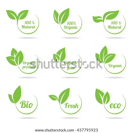 Set of bright green labels with leaves for organic, natural, eco, bio products isolated on white background.