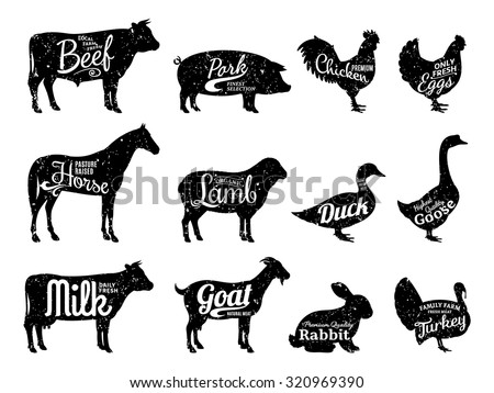 Set of butchery logo templates for groceries, meat stores, packaging and advertising