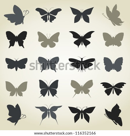 Set of butterflies for design. A vector illustration - stock vector