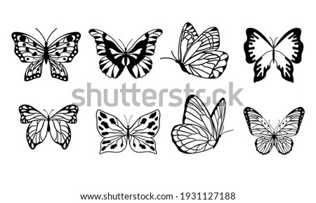 set of butterflies isolated on white background in vector format very easy to edit, individual objects