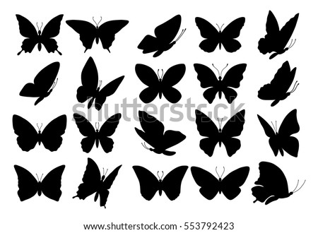 set of butterflies  isolated on