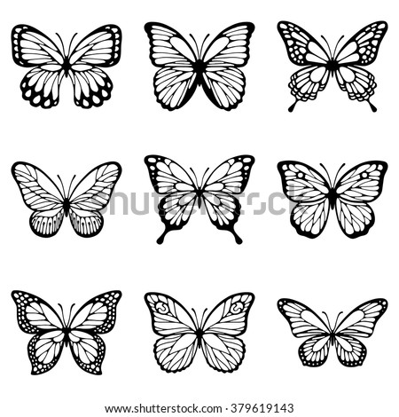 Monarch Butterfly Clipart Outline Butterfly Outline Png Stunning Free Transparent Png Clipart Images Free Download
