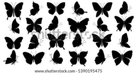 Set of butterflies silhouettes on white background. Vector illustration