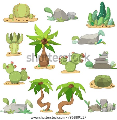 set of cacti  stones and palms