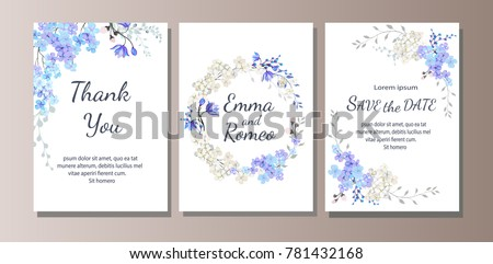 set of card with blue wild