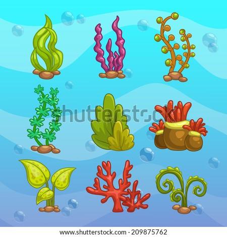 set of cartoon algae  elements