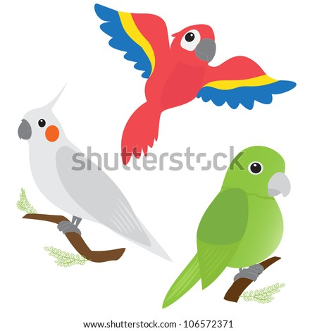 Set of cartoon parrots - macaw, corella, amazon