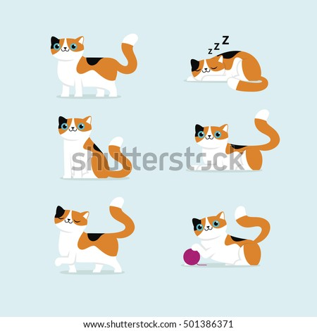set of cat poses vector