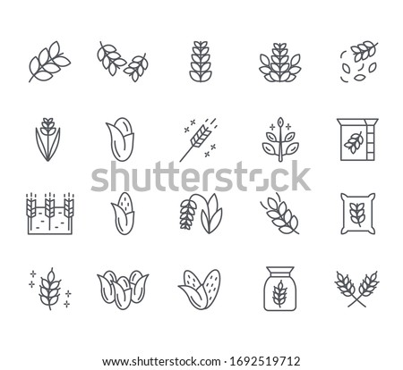 Set of cereal Related Vector Line Icons. Includes such Icons as plants, wheat, vegetable garden, flour, grain and more. Сток-фото ©
