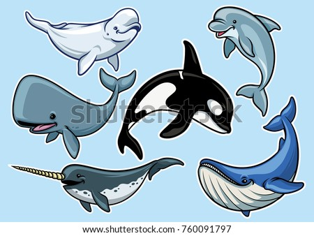 set of cheerful various of whales in cartoon style