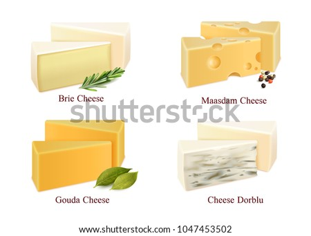 Set of cheese kinds in pieces brie, gouda, dorblu and maasdam with spices isolated vector illustration