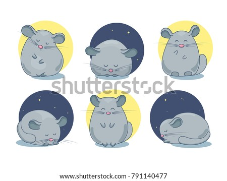 Set of chinchilla pet drawings. Sleepy small animal, dozing and awake, smiling. Cute cartoon line art with details. Vector illustration isolated on white.