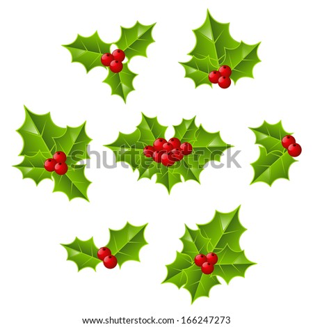 Set of Christmas holly leaves