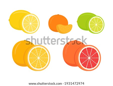 Set of citrus lemon, mandarin, lime, orange, grapefruit - whole, cut half. Fresh sour citrus fruit with vitamins. Piece and slice citrus. Vector illustration isolated on white background